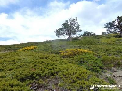 Lagunas de Pelañara-Peña Cítores- Guadarrama; rutas pedriza senderismo cercedilla